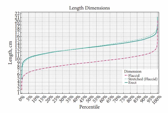 Care este lungimea normală a penisului? Un nou studiu spulberă mitul celor 17 cm - iasiservicii.ro