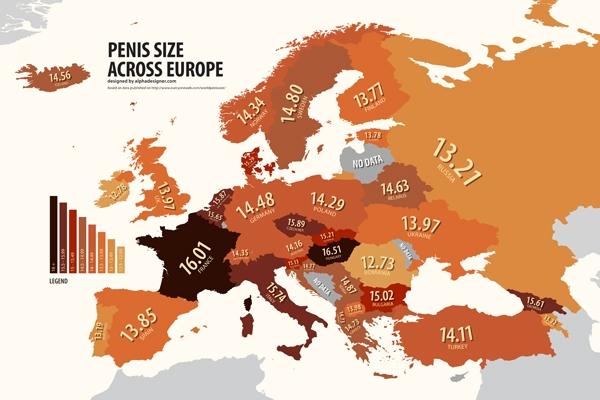lungimea penisului european