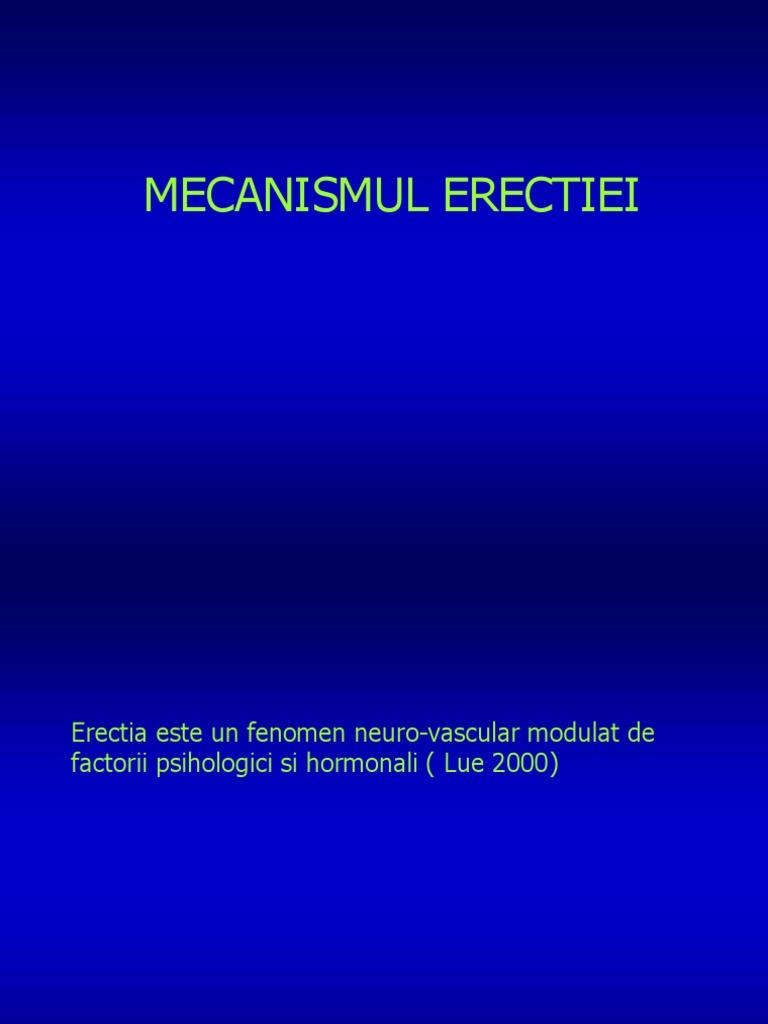 mecanism de erecție nocturnă)