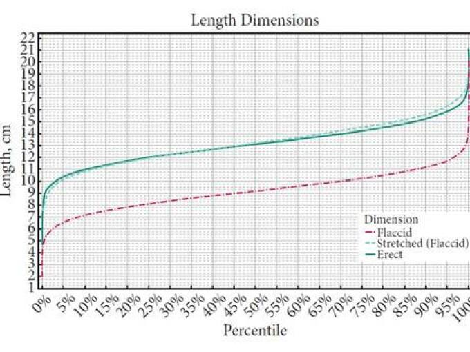 dimensiuni optime ale penisului pentru femei