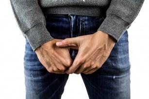 localizarea penisului