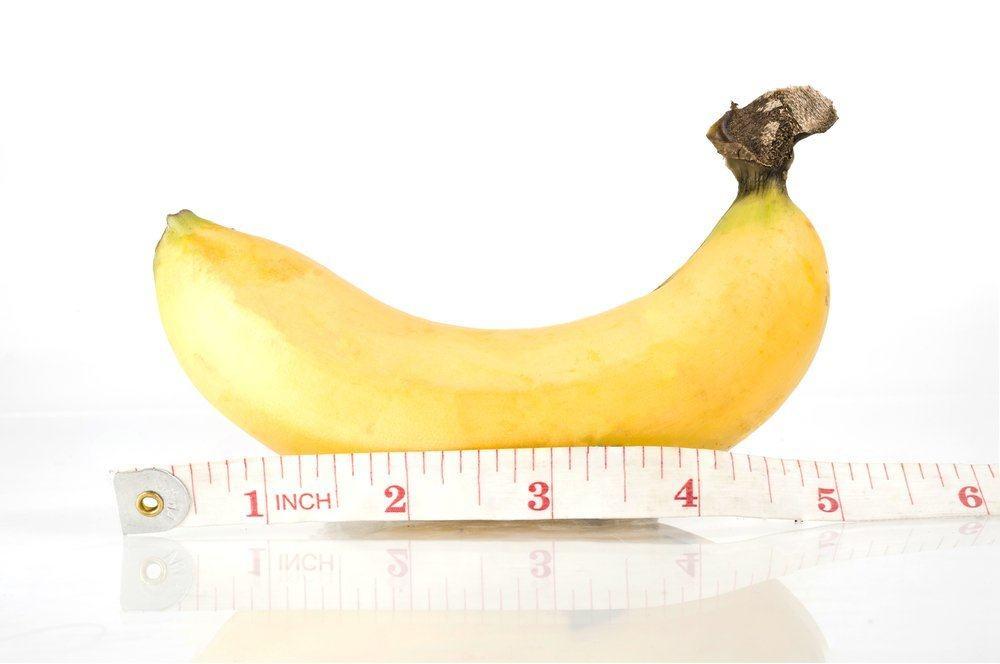 penisul se micșorează de- a lungul anilor)