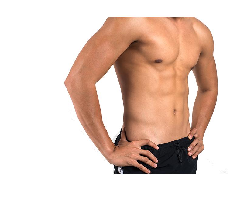 cartilaj sau mușchi al penisului)