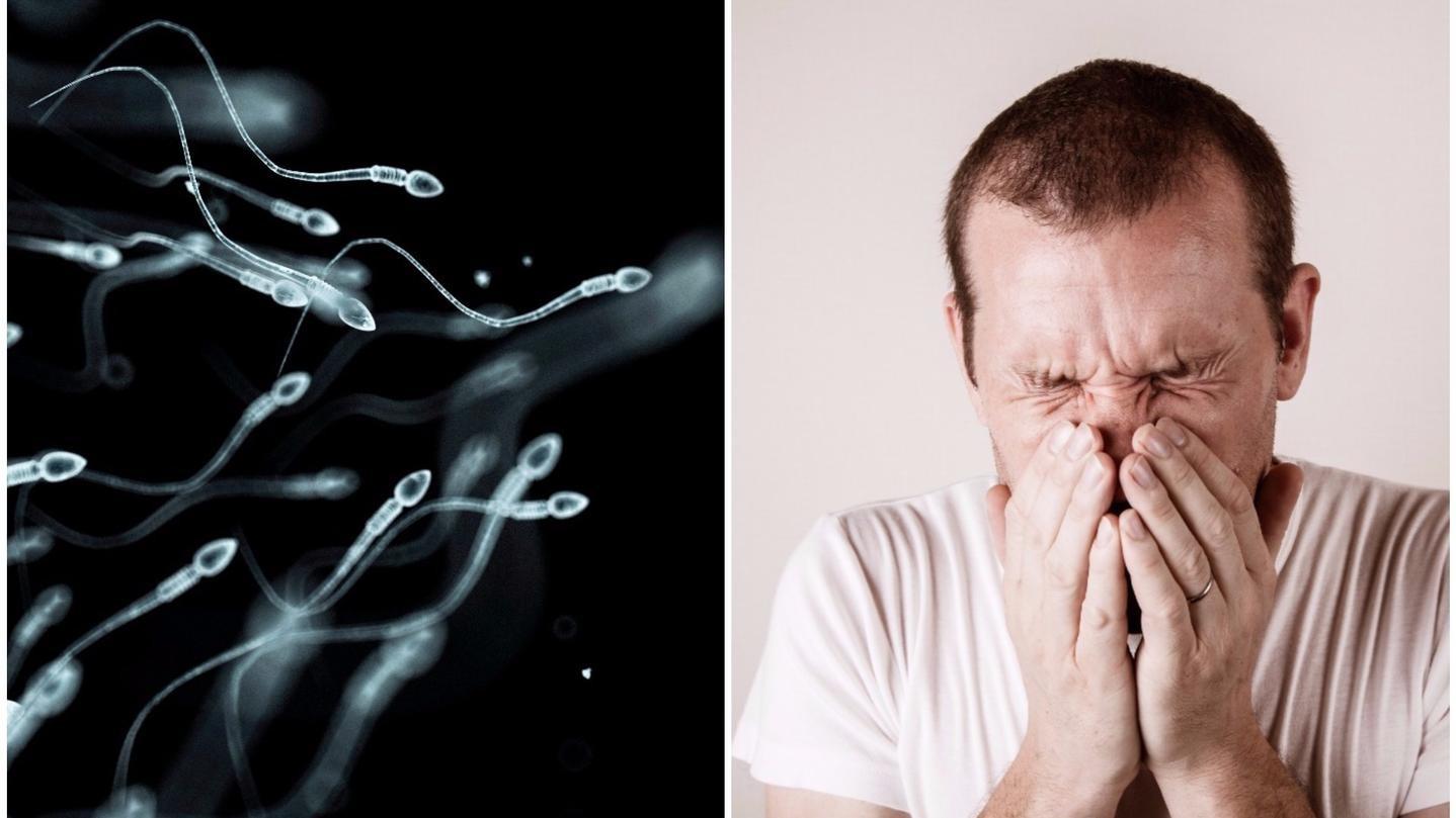 Infectiile genitale la barbati, simptome boli cu transmitere sexuala