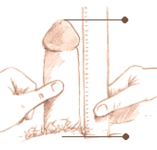 a măsurat penisul unui tip)