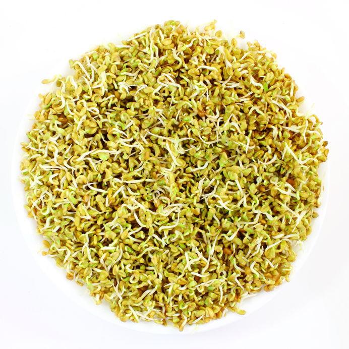 Tratament pentru Libidou scazut - Herbagetica