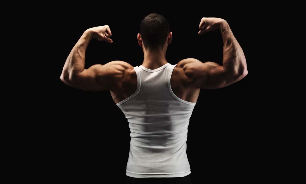 cum afectează testosteronul erecția